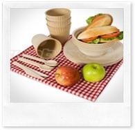 biodegradable-picnic-ware[1]